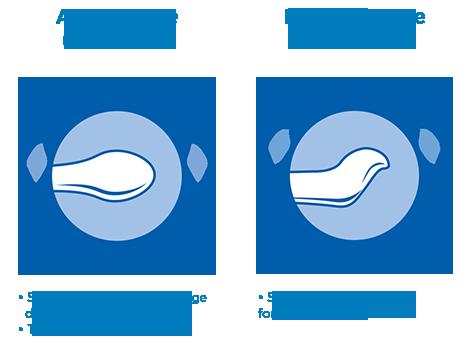 Tétine anatomique et physiologique
